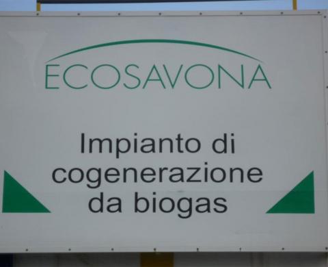 Ecosavona