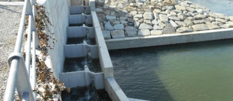 Scala di rimonta della fauna ittica per centrali idroelettriche